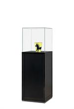 Glaskuber Glaskub på piedestal